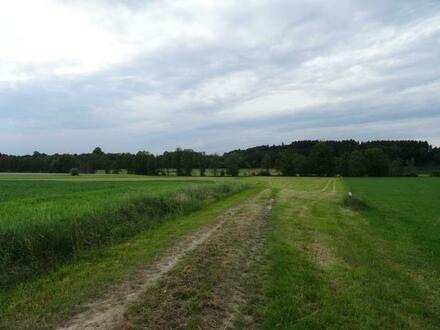 Es wird ein Grundstück mit einer Fläche von 7 070 m² verkauft.  Bodenbonität...