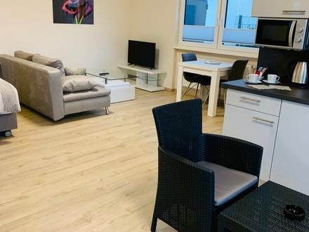 Wohnen auf Zeit - Schöne vollständig möblierte Apartments mit Terrasse in Sulzbach - ruhige Lage