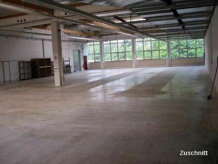TOP Logistik-Halle ab 800 m² teilw. (LKW durchfahrbar) Rampen