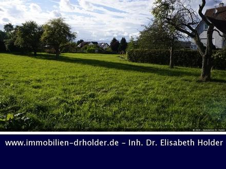 Bauträger aufgepasst: Grundstück mit Potential, Kauf, Winterlingen