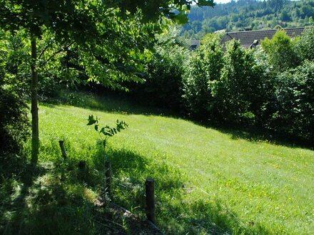 Baugrundstück in Hilchenbach - Dahlbruch