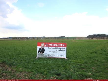 **Landwirtschaftliche Fläche/ideale Geldanlage auch in Krisenzeiten**