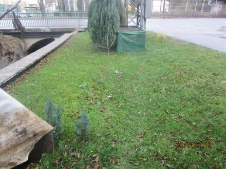 Freizeitgarten in Weiding