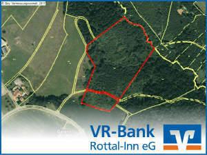 Teilbar: Wüchsiger Mischwald zwischen Ulbering und Kösslarn