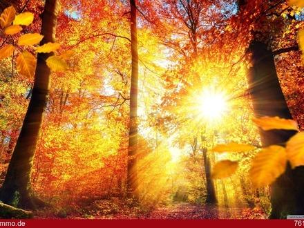 brandaktuelles Herbst-Angebot !
