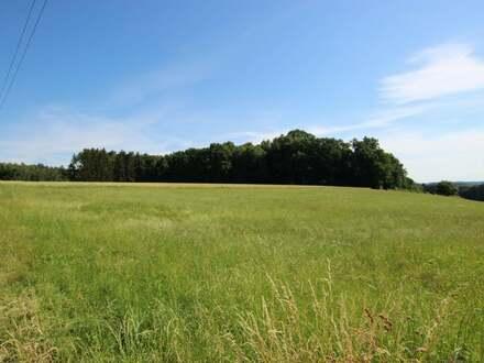 Großzügiges Baugrundstück in Ortsrandlage in Senden-Witzighausen!