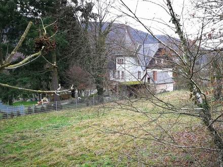 DREGER: Grundstück (teil- oder erweiterbar) für die Bebauung mit einem EFH oder Doppelhaus
