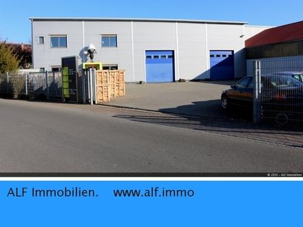 Hochregallager - Kälteisoliert - für 900 Europaletten