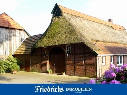 Historische Resthofstelle m. Original-Reetdach-Bauernhaus in Edewecht-Portsloge - reizvolle Dorflage