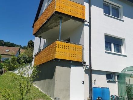 Energetisch saniertes 2-3 Familienhaus mit großen Garten !