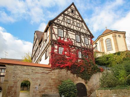 //Odenheim //Die Burg //§7i //Sonder-AfA-2019 //Denkmalschutz //Nachhaltigkeit //Kernsanierung