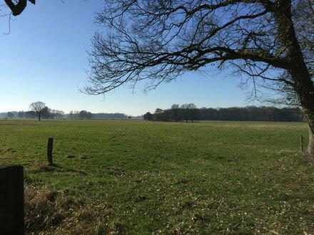 rd. 4 Hektar ackerfähiges Grünland in Westerstede/Eggeloge