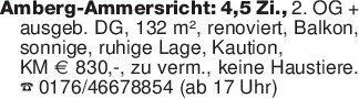 Amberg-Ammersricht: 4,5 Zi., 2...