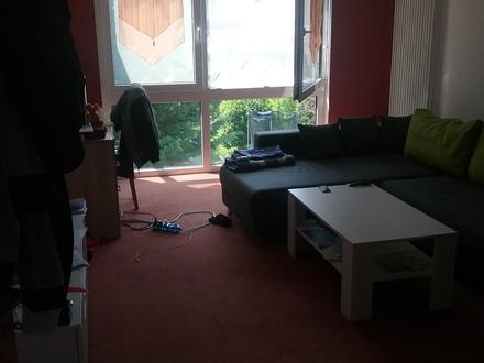 Ingelheim Frei Weinheim, 1 Zimmer, hell - ruhig - viel Grün