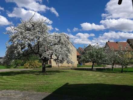 Großes landwirtschaftliches Anwesen mit ehemaligem Schloss in Sinnleiten / Edelsfeld