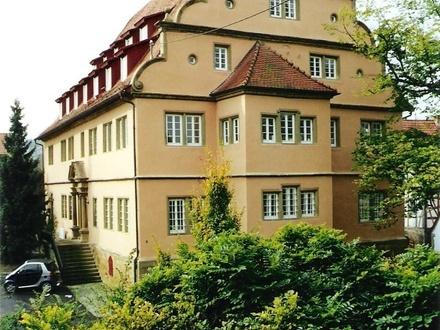 """Ein """"Schmuckstück"""" - ein Stück Geschichte - Schloss Zaberfeld"""