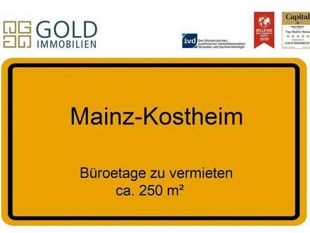 GOLD IMMOBILIEN:Großzügige Büroetage in toller Lage von Mainz-Kostheim