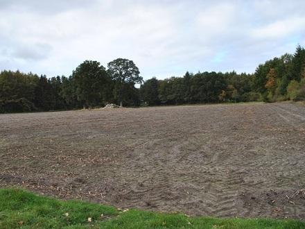 GEGEN GEBOT - ca. 2,9 ha Landwirtschaftliche Flächen in Lathen!