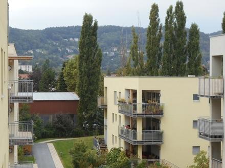 """""""Peter Rosegger"""" 3ZI+Balkon ruhig,ökologisch in Massivholz/Lehmbauweise"""