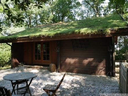 Kleines Holzhaus auf idyllischem Waldgrundstück