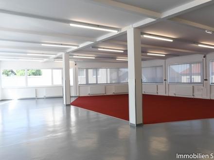 Großes, modernes Büro und Verkaufsraum in Salzburg-Langwied zu mieten