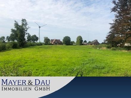 Georgsfeld: Bauplatz inkl. Weideland Obj.-Nr.4333