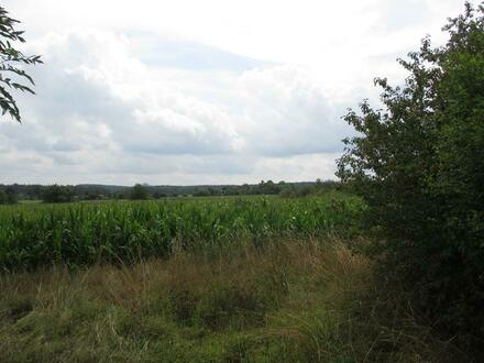 Grundstück in Kirchenpingarten