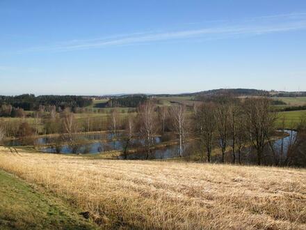 Teichanlage bei Bärnau