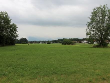 Landwirtschaftliche Fläche in Kolbermoor!