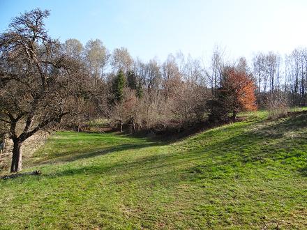 Grundstück mit Südausrichtung in ruhiger Lage