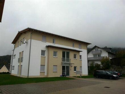 Neubauwohnung mit Alpenblick
