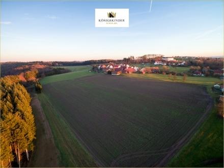 Idyllisches Hof-Grundstück mit großer anliegender Landwirtschaftsfläche in Althütte