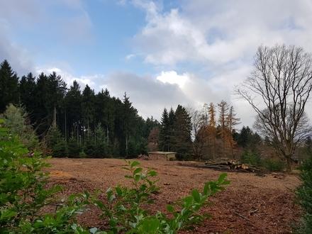 Herrliches Villen-Baugrundstück in ruhiger Waldrandlage von Niedernhausen-Wildpark