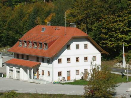 3-Zimmer Dachgeschoßwohnung in Hof zu vermieten!