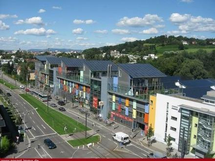 Absolut ruhige 3 Zimmer-Wohnung mit Tiefgarage (inkl.) nahe zum Stadtzentrum von Freiburg!