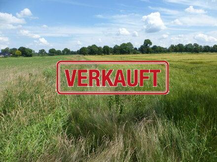7,6 ha Ackerland in Westerstede-Torsholt