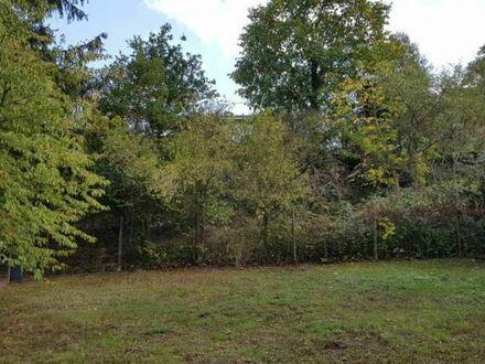 ruhig gelegenes Grundstück mit Aussicht in Raumbach bei Meisenheim zu verkaufen