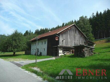 Sanierungsbedürftige Hofstelle in Fastalleinlage mit ca. 4.900 m² arrondiertem Grund zw. Deggendorf u. Viechtach