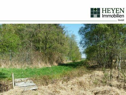 Nur 2,- EUR pro m² | Wald-Grundstück im Naturschutzgebiet mitten in Ostfriesland