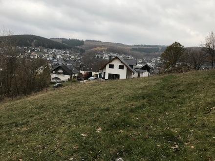 Schönes Wohnbaugrundstück in sonniger Waldrandlage von Netphen-Salchendorf