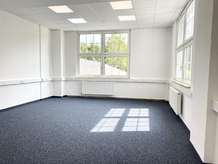 Erstbezug - frisch renovierte helle Bürofläche l Büro in Chemnitz-Einsiedel mieten