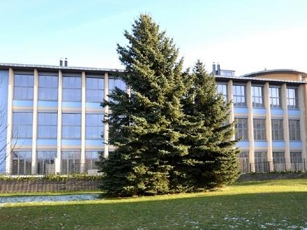 Ihre Kapitalanlage - großzügige Atelierwohnung mit Gartenanteil in Pirna