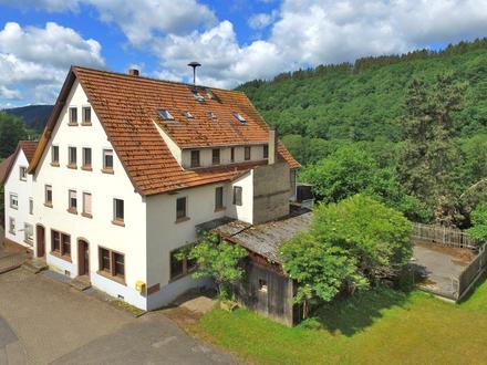 Sanierungsbedürftiges, sehr großes Mehrfamilienhaus auf circa 2.800 m² Grundstück in idyllischer Lage
