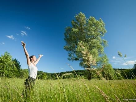 Reizendes Anwesen für Therapie, Gastronmie - für Ihre berufliche Zukunft !