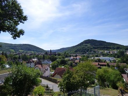 Unverbaubarer Ausblick auf Amorbach