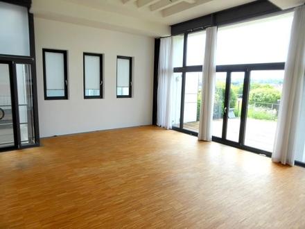 Sehr helle und geräumige 2-Zimmer-Loft mit großer Dachterrasse in Ulm/Söflingen.