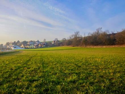 HOAMATLAND - Bauparzelle 800 m2 in Weinzierl/Perg