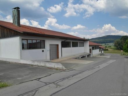 Optimal ausgestattete und gelegene Hallen - auch einzeln - zu vermieten Nähe Cham/Opf.