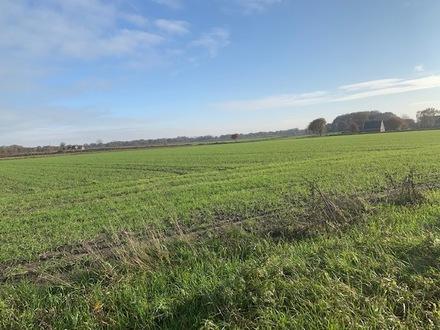 Grün- und Ackerländereien in Dunum