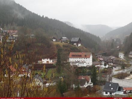 *** Ein typischer Bauplatz im Schwarzwald***